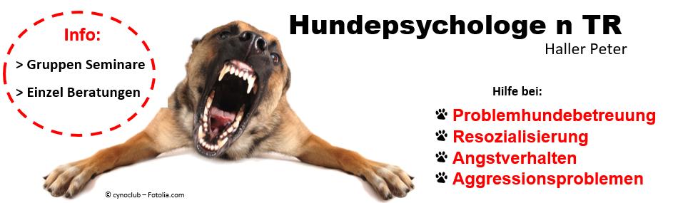 Hundepsychologe