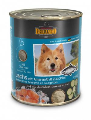 6er PACK Hundefutter Belcando Lachs mit Amaranth & Zucchini hochwertige Feuchtnahrung