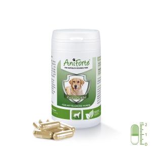 AniForte® ZeckenSchild natürliche Zeckenabwehr für mittelgroße Hunde von 10-35 kg