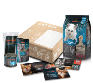 LEONARDO® Kitten Cat Box